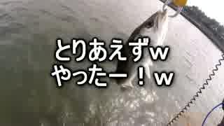 クルマで釣りに行こう♪ part 58 【シーバ