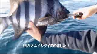 平成29年4月3日イシダイ&シマアジ釣り