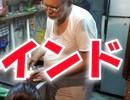 英語を話せないアホが1か月インドに行ってみた part.7