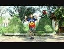 【あおい】チット・チャット・マーチ!【踊ってみた】