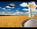 小麦粉を脱穀するアライさん