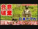 【不可逆的合意の破棄確実】 日本こそが合意の精神を守れ!何言ってんだ!