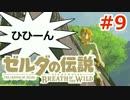 【ゼルダの伝説】のんびり実況プレイ#9【ブレス オブ ザ ワイルド】