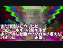 【新】クソ動画シーズン2 #1.3
