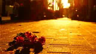 【❄歌ってみた❄】 二月の花嫁 【深冬】
