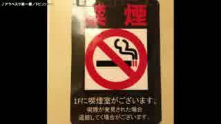 【生海月】なまくらじお【2017.4.13】