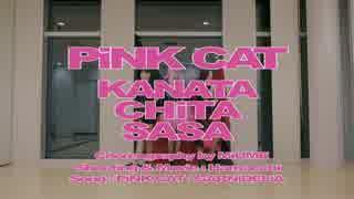 【ささちた彼方】PiNK CAT【踊ってみた】 thumbnail