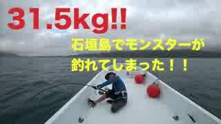 石垣島で31.5キログラムのとんでもない魚が釣れてしまった。