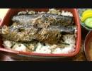 にしん丼と麻婆そば(成増の寿々喜)
