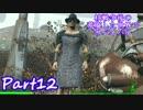 【実況】核戦争後の荒廃した世界でサバイバル【Fallout4】part12