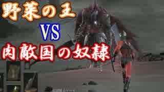 【ダークソウル3】野菜帝国の王と行くDLC2初見攻略【実況】part10