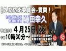 2017_04_25 参議院外交防衛委員会