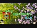【ゆっくり】鎌倉七福神巡り 長谷寺【第三夜】