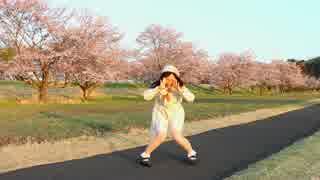【丸井かお】 君色に染まる 踊ってみた 【春です】