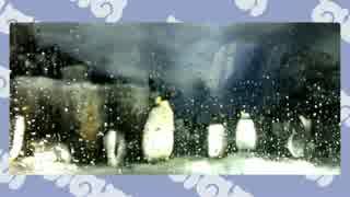 けものフレンズ聖地巡礼+コウテイペンギン@名古屋港水族館