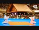 【おりがみミニ劇場】相撲(決まり手なんて)