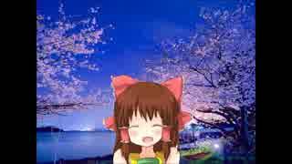 夜桜に舞う神社.mp4