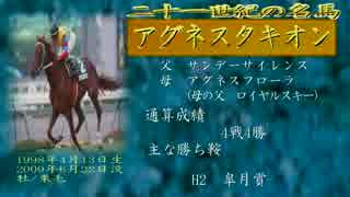 21世紀の名馬 アグネスタキオン