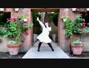 【丸井かお】 バタフライ・グラフィティ 踊ってみた 【オーイェイ!】