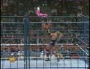 【WWF】ブレット・ハート(ch.)vsオーエン・ハート【Summerslam 1994】
