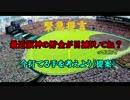 【ゆっくり解説】阪神タイガースが下降線だから対策を考えてみよう