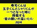 寿司くんは玉子くんとシャリくんが一つとなった時に(以下略).mp4
