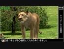 【RTA】AFRIKA 6:18:09 (7/11)