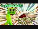 【日刊Minecraft】最強の匠は誰か!?黄昏の森 ダークタワー2日目【4人実況】