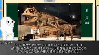 ゆっくりが恐竜を解説すんよ~ 第三十三.