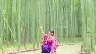 【みこ】夢と葉桜 踊ってみた【京都】