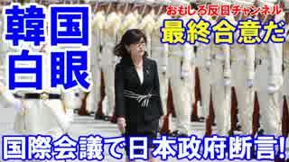 【韓国が白眼で発狂】 国際会議で日本政府