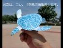 Iで。紙飛行機動画。6月14日  ハートや亀やイロイロね~!