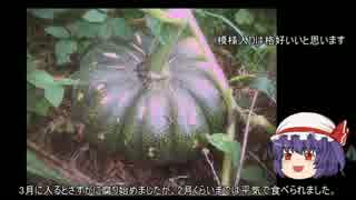 ゆっくり農民58沖縄野菜を育ててみません