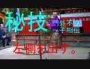 字幕付直心影流実戦技編直心影流十七代宗家秋吉博光先生2015年10月21日