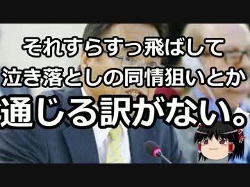 【Slowly Maintenance】 Actual State of Hate Speech against American in Okinawa Parok