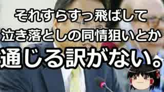 【ゆっくり保守】沖縄パヨクのアメリカ人に対するヘイトスピーチの実態