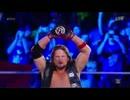 WWE 2017 マネー・イン・ザ・バンク・ラダー・マッチ01