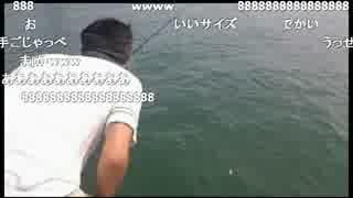 釣り 生主VSマイワシ 今年初