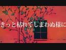 【せな⚩】レディーレ 歌ってみた⚩