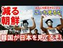 【韓国が日本を見てうらやましいニダ】 見るな、見るな、見るな!