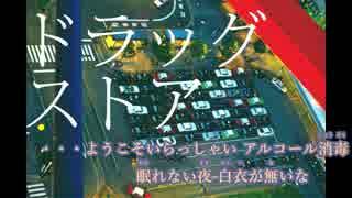 【ニコカラ】ドラッグストア〈有機酸〉(On