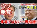 【韓国の夢が大崩壊】 FTAで議論はしてない→早くも再協議開始!
