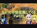 【AoE2】ちょっと中世征服してくる Part25【VOICEROID&ゆっくり実況】
