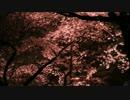 千本桜/初音ミク