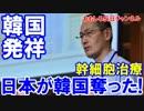 【韓国の大発見を日本が強奪】 幹細胞治療推進は韓国起源だ!