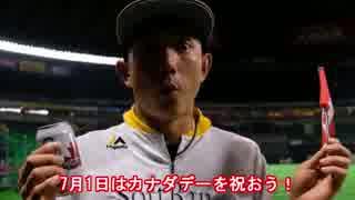 【MLB】2017年メジャーリーグ珍プレー(前半戦編) thumbnail