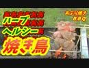 【炭火焼】ハーブヘルシー焼き鳥!【BBQ修造】16