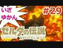 【ゼルダの伝説】のんびり実況プレイ#29【ブレス オブ ザ ワイルド】