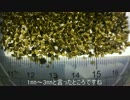 鹿児島各所18 宝石を散りばめた砂浜