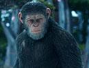 『猿の惑星:聖戦記(グレート・ウォー)』予告B